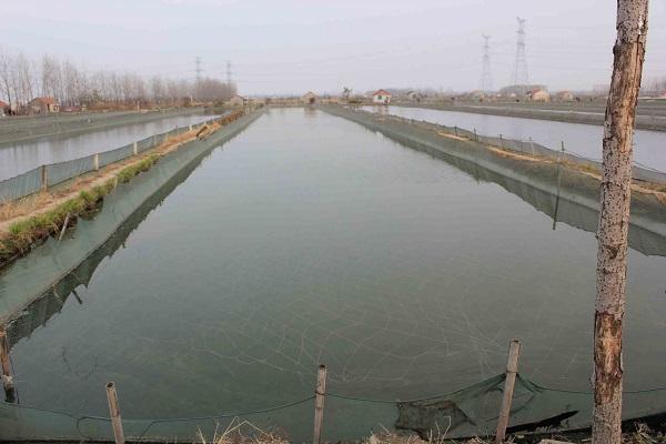 池底向排水口倾斜,形成一定的坡度.    1.